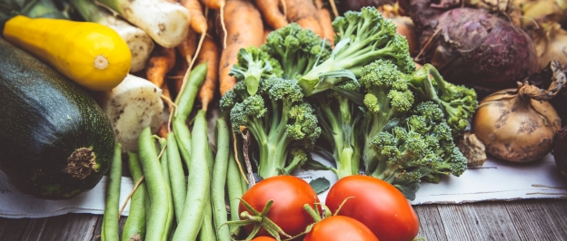 Composting Your Food Waste Part 1